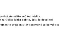 misel1